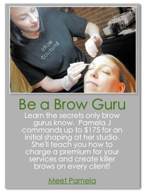 lash and brow academy